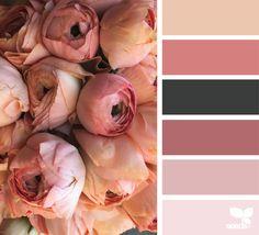 33 Trendy Ideas For Bedroom Pink Paint Design Seeds Pink Palette, Colour Pallette, Color Combos, Pink Color Palettes, Design Seeds, Flora Design, Room Color Schemes, Color Rosa, Color Theory