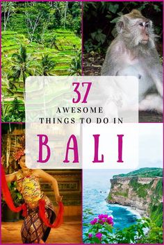 37 of the best things to do in Bali with kids - including how to get the attractions and the cheapest way to get tickets.