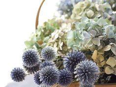 Toutes nos astuces pour réaliser vos compositions de fleurs séchées