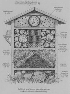 Nice explanation of which sections are intended for which insects - All About Garden Bug Hotel, Famous Shop, Beaches In The World, Modern City, Permaculture, Bird Houses, House Colors, Outdoor Gardens, Bugs