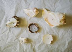 The sweetest way to use vacation candles to create the mood at home. Sincerely, Kinsey: Seashell Candles // How-To Homemade Candles, Diy Candles, Scented Candles, Velas Diy, Best Smelling Candles, Seashell Candles, Coffee Candle, Citronella Candles, House Smells
