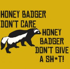 """""""Honey Badger Don't Care, Honey Badger Don't Give a Sh*t!"""" Funny YouTube T-shirt from DonkeyTees.com"""
