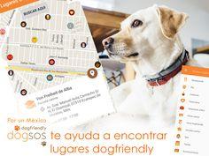 Dogsos, aplicación 100% mexicana. Es una app inspirada y diseñada para fomentar la adopción y fortalecer la cultura del tutor responsable Ayúdanos a fondear el desarrollo en IOS #FondeaXunMexicodogfriendly