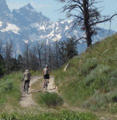 Things to Do in Jackson Hole Wyoming | Snow King Resort