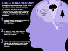 How long term memory acts within the brain in relation to your Hippocampus.