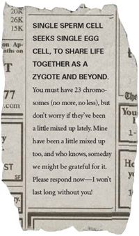 Newspaper ad from a sperm seeking single egg cell. Classroom Humor, Biology Classroom, Teaching Biology, Teacher Humor, Teaching Cells, Teaching Plan, Classroom Ideas, Science Puns, Science Lessons