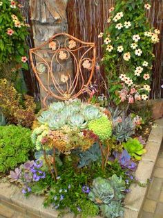 Love this concept. Makes a nice green spot in a desert garden. A Succulent English-Style Garden Unique Gardens, Beautiful Gardens, Beautiful Life, Plantas Indoor, Deco Champetre, Chair Planter, Deco Floral, Cactus Y Suculentas, English Style