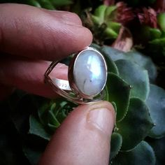 Bekijk dit items in mijn Etsy shop https://www.etsy.com/nl/listing/246808590/rainbow-moonstone-ring-sterling-silver