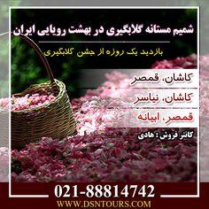 تور گلابگیری شماره تماس : 02188814742 وب سایت : http://www.dsntours.com/