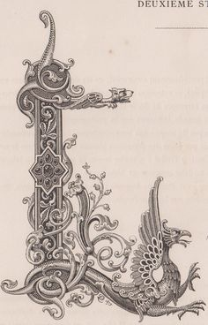 Details on Monogram, digits, letter L with engraving dragon from 1882 - mandabri letters Fancy Letters, Monogram Letters, Illuminated Letters, Illuminated Manuscript, Ornament Drawing, Tattoo Lettering Fonts, Illumination Art, Letter L, Alphabet Art