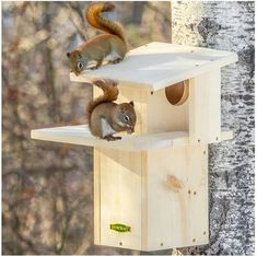 Duncraft Squirrel Den - Watch squirrels scamper up the built-in ladder to lounge on the two-sided sun porch because squirrels love to soak up the sun! Squirrel Home, Baby Squirrel, Squirrel Feeder Diy, Bird House Plans, Bird House Kits, Bird House Feeder, Bird Feeders, Woodworking For Kids, Woodworking Projects