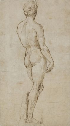Exceptional Drawing The Human Figure Ideas. Staggering Drawing The Human Figure Ideas. Male Figure Drawing, Figure Sketching, Figure Drawing Reference, Guy Drawing, Life Drawing, Drawing Sketches, Art Drawings, Figure Drawings, Human Anatomy Art