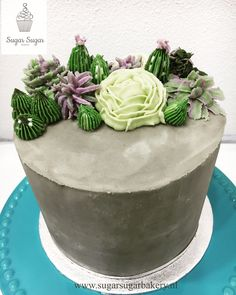 Concrete look with succulents for a birthday