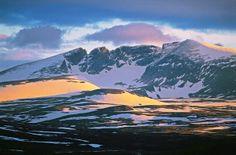 Snøhetta - Dovrefjell-Sunndalsfjella nasjonalpark - Norske Naturperler Lillehammer, Nature Scenes, Norway, Beautiful Things, Birth, Ikea, National Parks, Landscapes, Around The Worlds