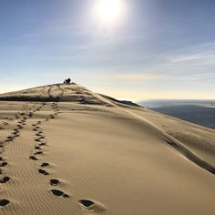 Looking back on my visit to the Dune of Pilat in France since I've forgotten what the sun looks like here in rainy San Francisco. It's easy to remember the trip since I'm still finding sand in my shoes over a month later Visit Bordeaux, Le Pilates, Forest City, Excursion, Beautiful Park, The Dunes, France Travel, Day Tours, Day Trip