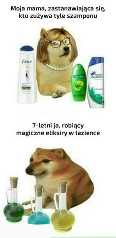 Funny Mems, Funny Jokes, Reaction Pictures, Funny Pictures, Polish Memes, Weekend Humor, Just Smile, Mood Quotes, Good Mood