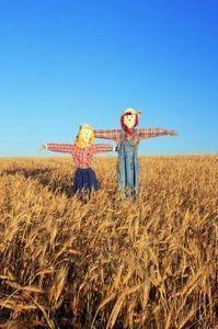 How to Make a Homemade Scarecrow for the Garden thumbnail