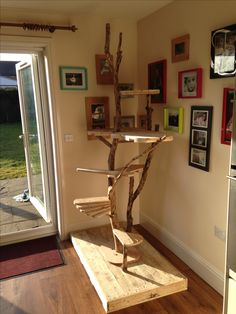 Home made cat activity tree using pallets and broken branches