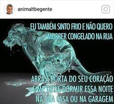 Por Aguiasemrumo: Romulo Sanches de Oliveira  Uma antiga lenda diz que, quando um ser humano acolhe e protege um animal até ao dia da sua morte, um raio de luz, que não podemos enxergar neste plano da existência, ilumina o caminho desse ser humano para sempre.