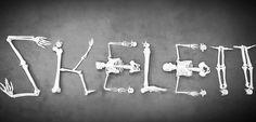 #skelett #modell #skeleton #schädel #anatomische #modelle