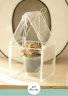 Upcycle cd cases to become a mini greenhouse.  #DIY #recycle