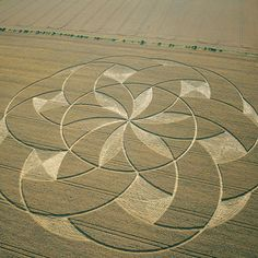 Crop Circle at Bishops Cannings, Wiltshire, UK - 11 August 2002