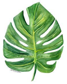 Monstera Leaf Aquarelle Peinture - 8 x 10 - Giclee Print - Tropical Green Foliage Botanical Art Print Green Wall Art, Leaf Wall Art, Leaf Art, Watercolor Leaves, Watercolor Paintings, Painting Prints, Fine Art Prints, Painting Art, Green Paintings