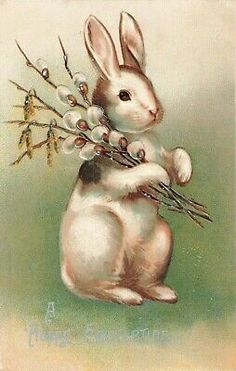 Postcard Happy Eastertide  | eBay Easter Religious, Religious Cross, Rabbit Eating, Christian Holidays, White Rabbits, Holiday Postcards, Vintage Easter, Easter Wreaths, Poster Size Prints