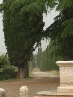 Felsina Winery, Tuscany