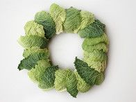 Create the first layer of your wreath by peeling leaves off the green cabbage and laying them over the wreath base. Leaves on the outside will be darker than leaves in the center, so spread them out and alternate between light and dark leaves. Secure the ends with floral wire.
