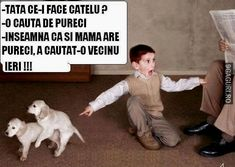 Tată, ce-i face cățelul? Funny Memes, Jokes, Cringe, Comics, Cute, Sweet, Crushed Stone, Childhood, Funny Humour