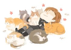 zhaozhaoovo: hux and cats