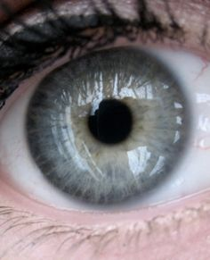 True Winter eye :: my iris is pretty similar to this, although a bit more blue