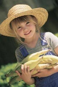 fresh picked corn...