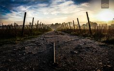 Way to sky by Carlos Figueiral on 500px
