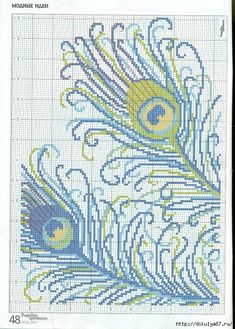 Peacock festher cross stitch