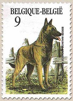 Belgian Stamps Belgian Race of Dogs. Mechelse herdershond