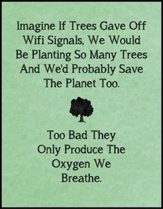 Imagine if trees gave off WIFI