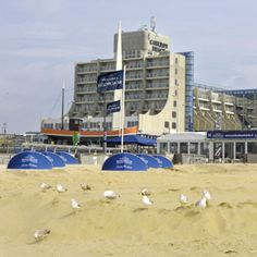 Scheveningen, Carlton Beach Hotel, a great internship (summer 2013).