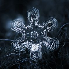 If It's Hip, It's Here: Amazing Close Up Photos Of Snowflakes Will Give You Goosebumps.