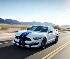 Ford's latest Mustang, the Shelby bucks a trend toward downsizing engines in performance vehicles while adding technology never seen before in this iconic muscle car. 2015 Mustang, Ford Mustang Shelby, Ford Mustangs, Mustang Cars, Ford Gt, Maserati, Ford 2000, E90 Bmw, Shelby Gt350r