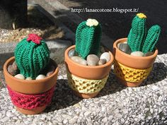 Suculentas Crochet