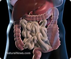 5 reasons your digestive system isn't working properly