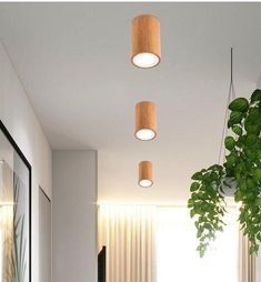 The Dru modern Nordic ceiling lights are the perfect simplistic lighting solution! Made from premium wood & glass. Free Worldwide Shipping & Money-Back Guarantee Led Ceiling Lights, Hanging Lights, Wall Lights, Wall Mounted Lamps, Led Wall Lamp, Home Lighting, Modern Lighting, Glass Pendant Light, Pendant Lamp