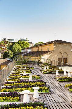 Un jardín en el techo de Milán