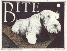 Sealyham Terrier: illustration by David Terry