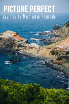 Day trip from Melbourne: Mornington Peninsula