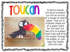 Rainforest Crafts: Toucan