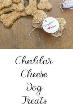 Cheddar Cheese Dog Treats