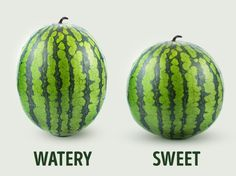 How to pick the perfect watermelon: 5 key tips from an experienced farmer Advertisement Nothing is as refreshing as the sweet, juicy taste of a watermelon on a summer day. However, a watermelon can only be as good as the one you choose from the market. Ripe Fruit, Fresh Fruit, Fruit A Pepin, Fruit Recipes, Cooking Recipes, Deco Fruit, Sweet Watermelon, How To Choose Watermelon, Watermelon Facts
